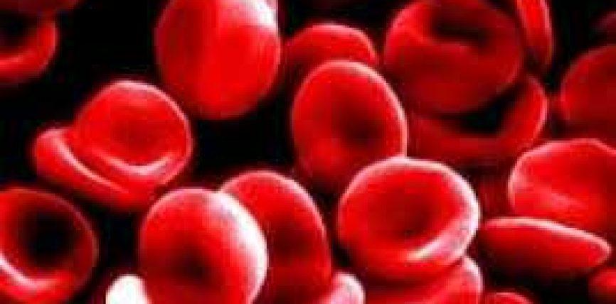 Çfarë duhet të konsumojnë anemikët