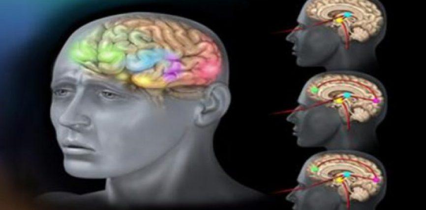 Psikologët thonë se ankthi ju shëndosh, ju sëmur dhe ju çon në depresion. Ne ju tregojmë se cilët bimë trajtojnë ankthin dhe depresionin më mirë se ilaçet