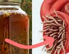 Antibiotiku më i fuqishëm natyral: shëron çdo infeksion në trup dhe vret të gjitha parazitët!