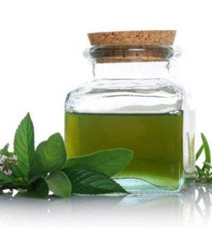 Nane është një bimë që jep një aromë shumë të mirë dhe është shumë shërues