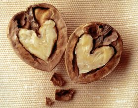 Arrat dhe Zemra