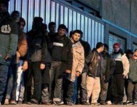 Azil në BE, nga 1335 fitojnë vetëm 20 shtetas