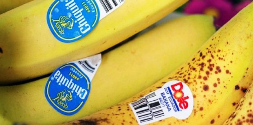 Ja cili është kuptimi i FSHEHUR i etiketave në ushqime (peme dhe perime)