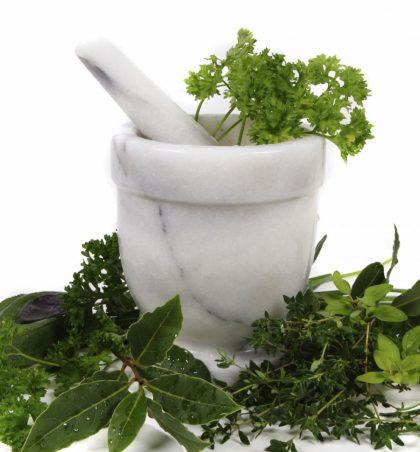 Bimët mjekësore