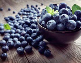 Boronica, fruti që ju shëron nga shume sëmundje