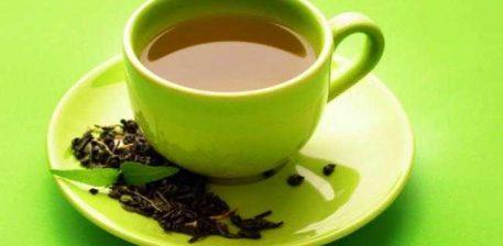Çaji  i gjelbër – Camellia Sinensis – për uljen e kolesterolit