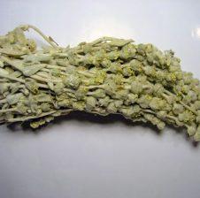 Çaj mali shqiptar