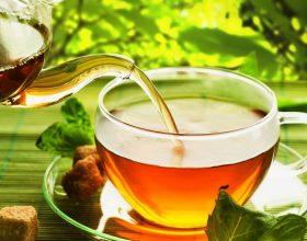 Si të përgatisim çaj me bimë të ndryshme?