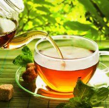 Çaj i gjelbërt – Camellia sinensis foliage dhe depresioni