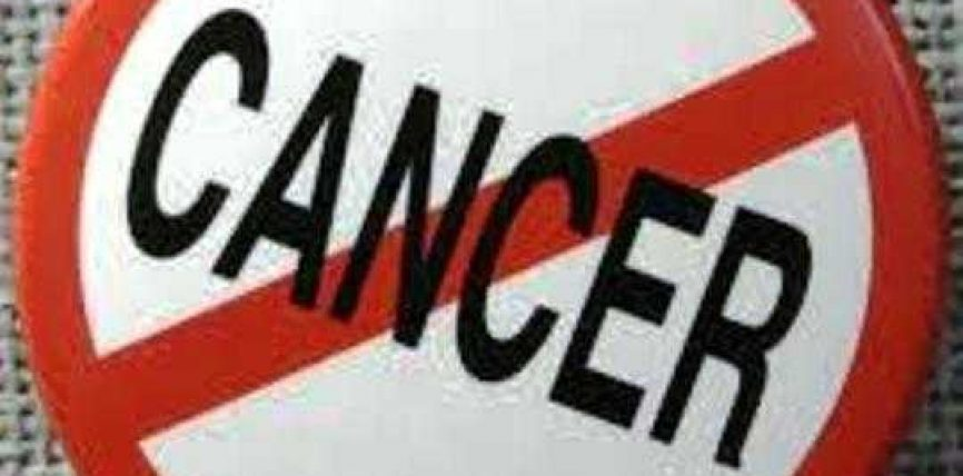 Propolisi armë e re kundër kancerit