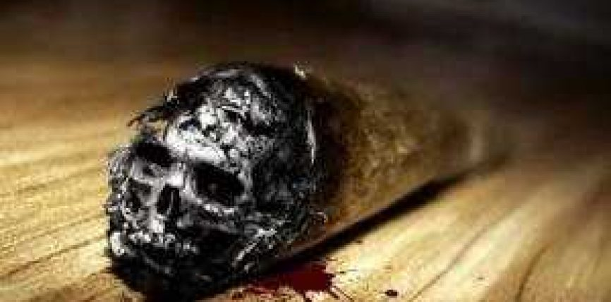 Duhani vret