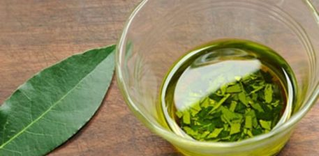Dafina, një gjethe e fuqishme për shëndetin