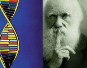 Përsosmëria e ADN-së hedh poshtë Teorinë e Evolucionit