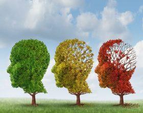 Katër gjëra e bëjnë jetën e njeriut të lumtur, ndërsa katër gjëra të tjera përbëjnë fatkeqësinë