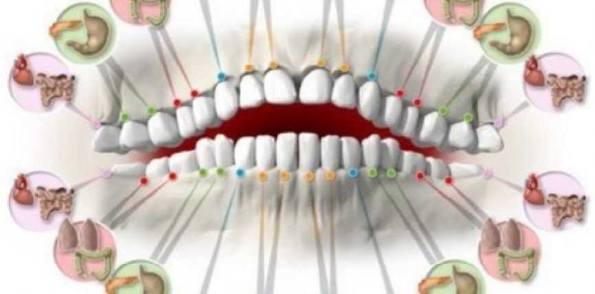 Dhimbja në secilin dhëmb parashikon (paralajmëron) problemet në disa organe!