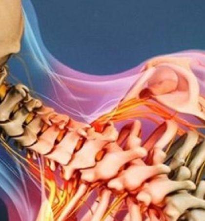 Çfarë duhet të dimë për dhimbjen e shpinës?