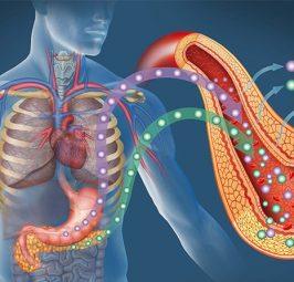 """Diabeti """"sulmon"""" sistemin kardiovaskular"""