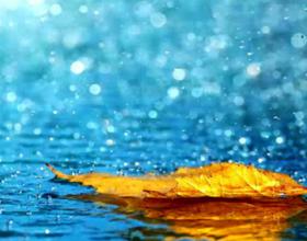 Shiu është mëshirë por edhe tërheqje e vërejtjes për njerëzit