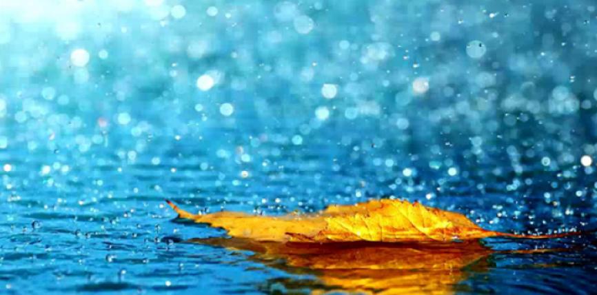 Çfarë duhet të bëjmë kur bie shi?