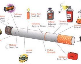 Shikoni sa e demshme eshte nje cigare e vetme…