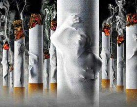 Duhanpirja, origjina e kancerit të mushkërisë