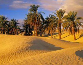 Si sillej profeti alejhi selam kur e shqetësonin njerëzit?!
