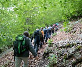 Ecja – 7 Dobitë shëndetësore që fitoni nga ecja 30 minuta në ditë
