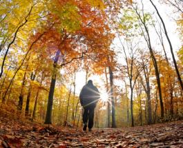 Shëtitja shëron depresionin dhe harresën