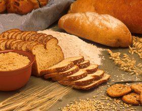 Dy ilaçe më të mëdhenj që na ka dhënë Allahu për sëmundjet e zemrës janë ushqimi që e ka ngrënë Pejgamberi s.a.v.s.