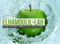 Falënderimi ndaj All-llahut dhe shkenca – Suzana Hasani