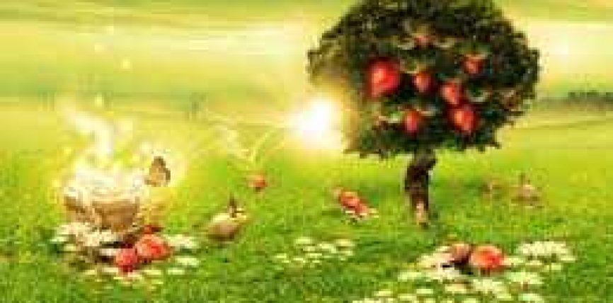 Endërrat dhe magjia në këndvështrim profetik