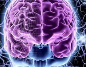 Epilepsia organike dhe shpirtërore (prekje nga xhindët)