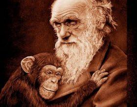Mashtrimi i evolucionit (Video)
