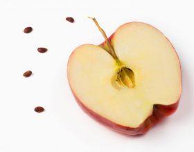 Përse Allahu i Lartësuar i ka bërë farat e mollës të hidhura në shije?