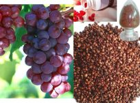 Pse duhet të përdorim vajin e farave të rrushit?