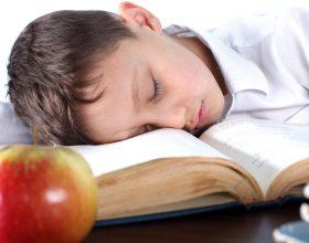 Shkaktaret e mossuksesit shkollor