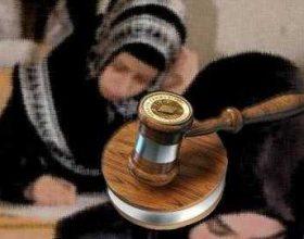 Turqi, hyn në fuqi ligji për lejimin e shamisë