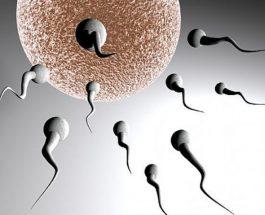 Shtatë shkaqet e sterilitetit