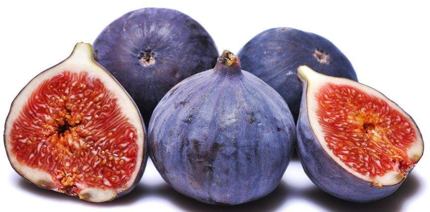 Fiku frut i jashtzakonshëm