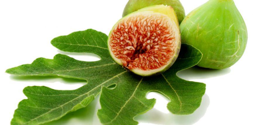 Fiku fruti i cili bën dobi për shumë sëmundje