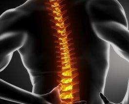 Fizioterapia është një degë e mjekësisë