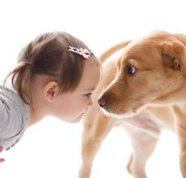 Arsyeja përse nuk duhet ta lini kurrë qenin t'ju lëpijë në fytyrë