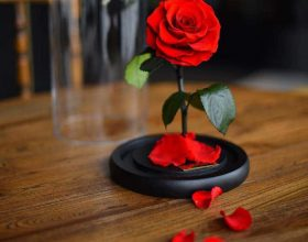 Çfarë duhet të thonë bashkëshortët gjatë marrëdhënieve intime? • ..(6)