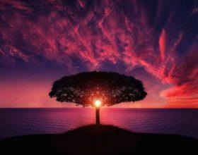 11 thënie frymëzuese, për të mos u dorëzuar asnjëherë
