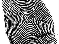 """Shkenca dhe Kur'ani argumentojnë të vërtetat e """"shenjave të gishtave""""!"""