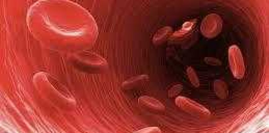Kure per hollimin, pastrimin e gjakut dhe rregullimin dhe zhbllokimin e damareve