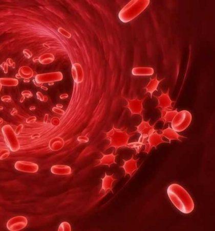 Ulja e kolesterolit në gjak me kokërr të zezë (Receta)