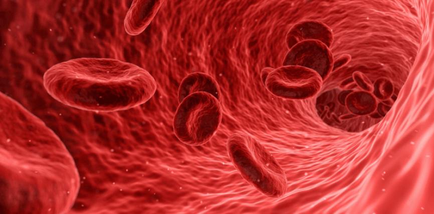 Shejtani shkon në çdo pjesë të trupit të njeriut ashtu si gjaku