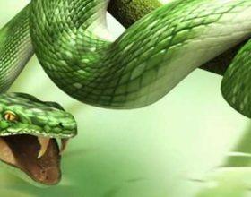 Cfar do te thote te shikosh gjarprin ne enderr?