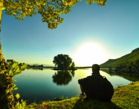 """Gjelbërimi ndikon pozitivisht në """"luftën"""" kundër stresit"""